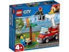 Bekijk LEGO City 4+ Barbecuebrand Blussen